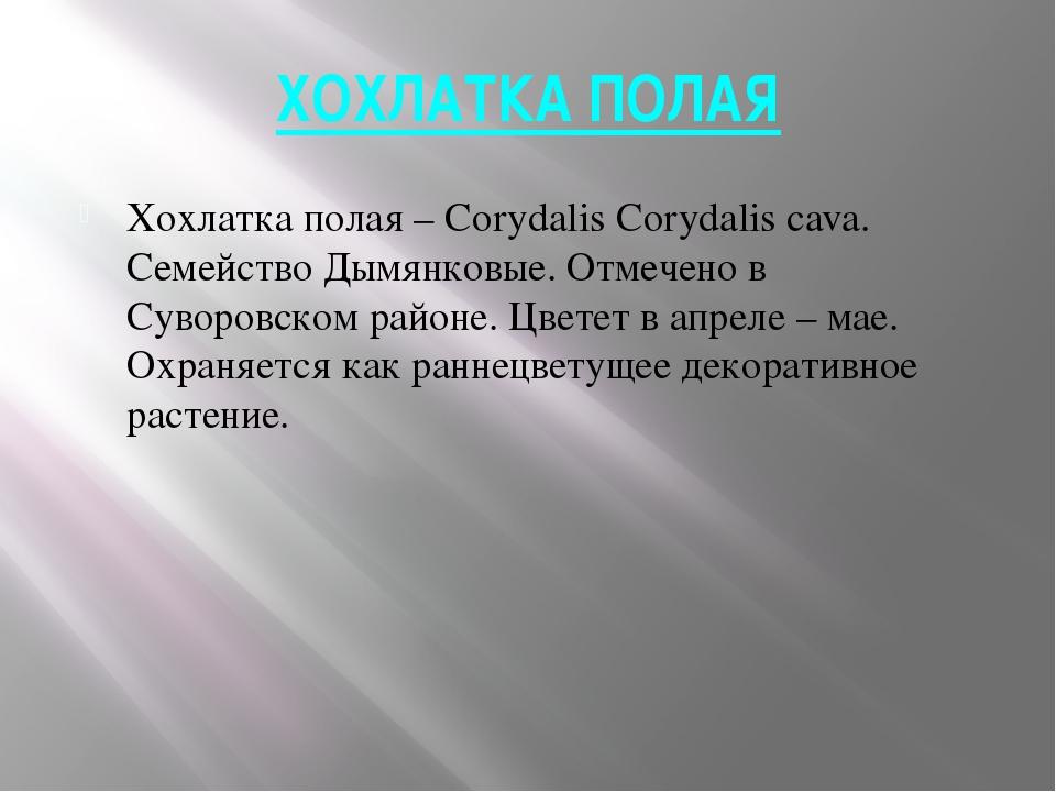 ХОХЛАТКА ПОЛАЯ Хохлатка полая – Corydalis Corydalis cava. Семейство Дымянковы...
