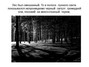 Лес был смешанный. То в полосе лунного света показывался непроницаемо черный