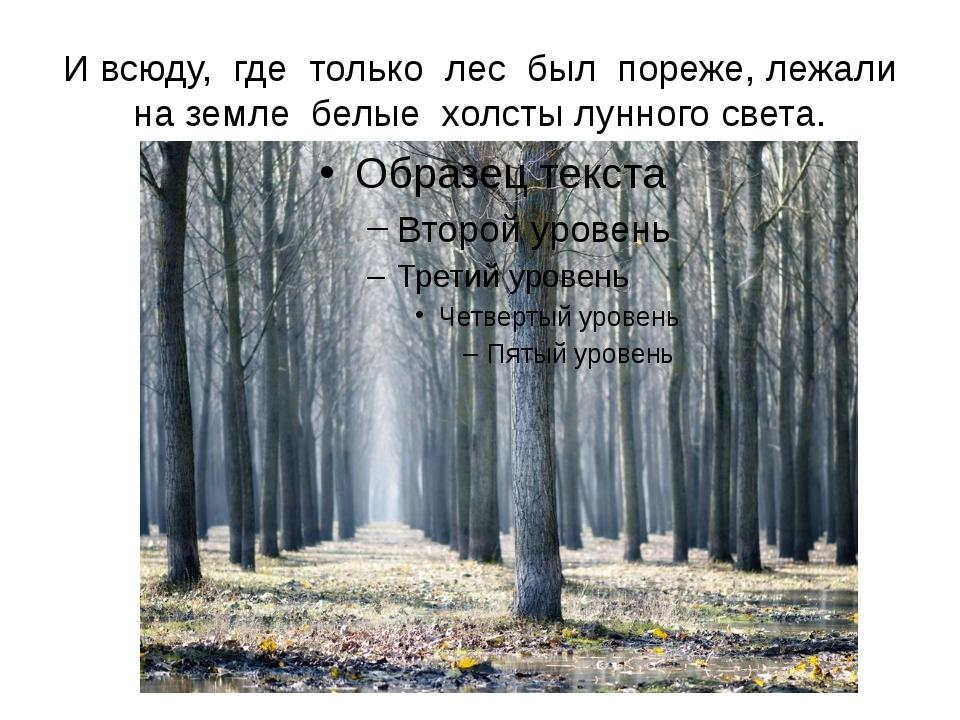 И всюду, где только лес был пореже, лежали на земле белые холсты лунного света.