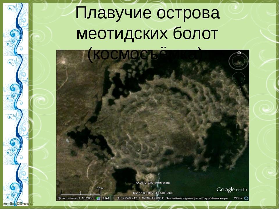 Плавучие острова меотидских болот (космосъёмка). http://linda6035.ucoz.ru/