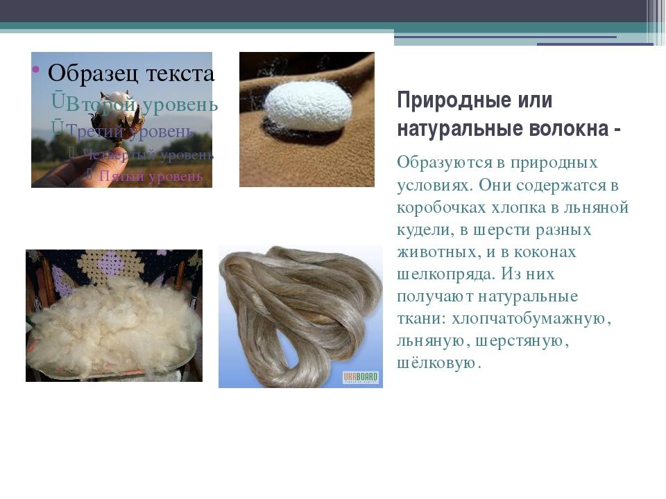 Природные или натуральные волокна - Образуются в природных условиях. Они соде...