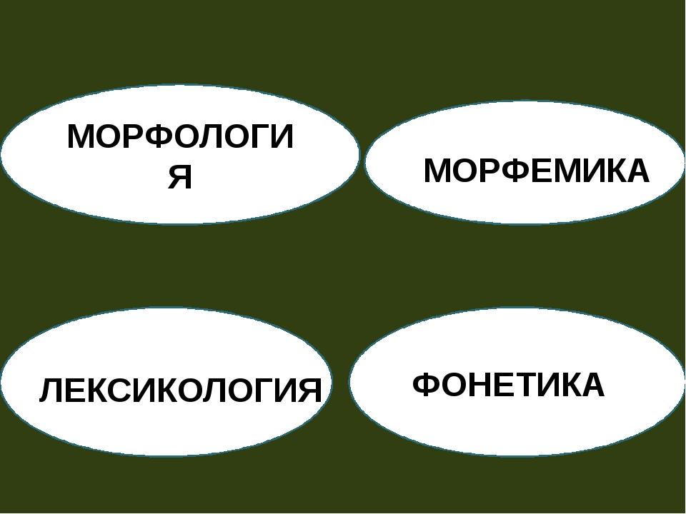 МОРФЕМИКА МОРФЕМИКА ЛЕКСИКОЛОГИЯ ФОНЕТИКА МОРФОЛОГИЯ
