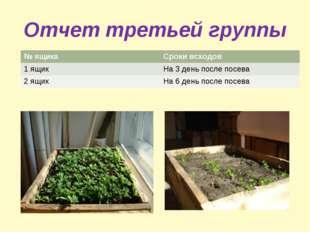 Отчет третьей группы № ящикаСроки всходов 1 ящикНа 3 день после посева 2 ящ