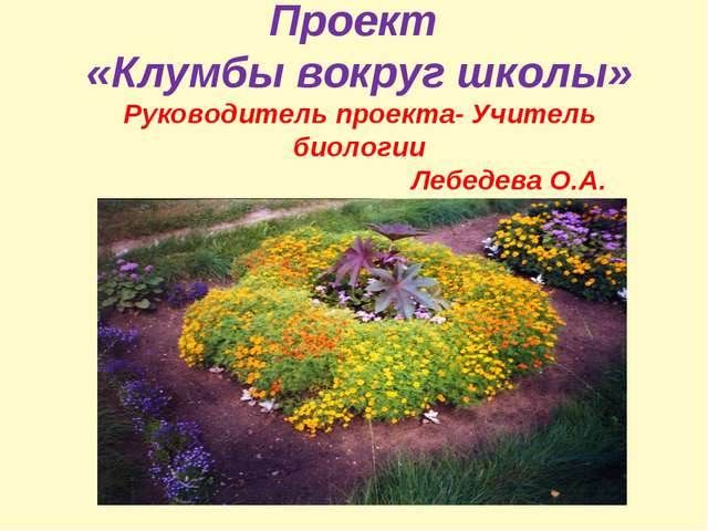 Проект «Клумбы вокруг школы» Руководитель проекта- Учитель биологии Лебедева...