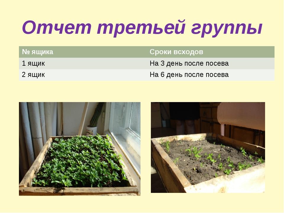 Отчет третьей группы № ящикаСроки всходов 1 ящикНа 3 день после посева 2 ящ...
