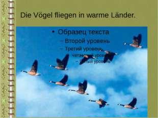 Die Vögel fliegen in warme Länder.