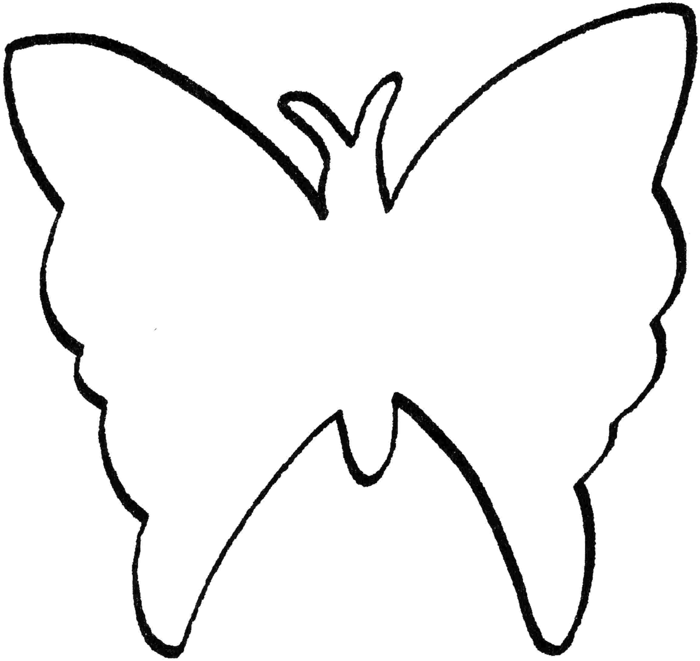Раскраски бабочки раскраска бабочка для малышей - раскраски онлайн