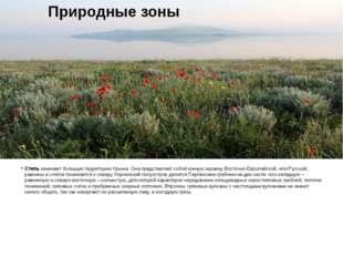 Степьзанимает большую территорию Крыма. Она представляет собой южную окраину