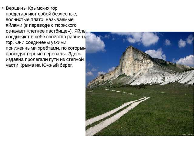 Вершины Крымских гор представляют собой безлесные, волнистые плато, называемы...