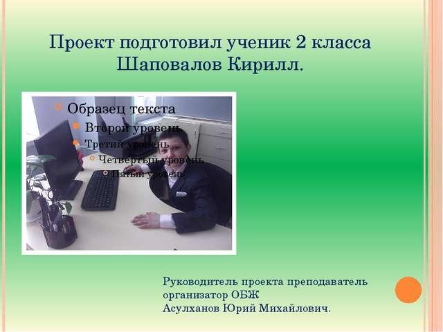 Руководитель проекта преподаватель организатор ОБЖ  Асулханов Юрий Михайлович.