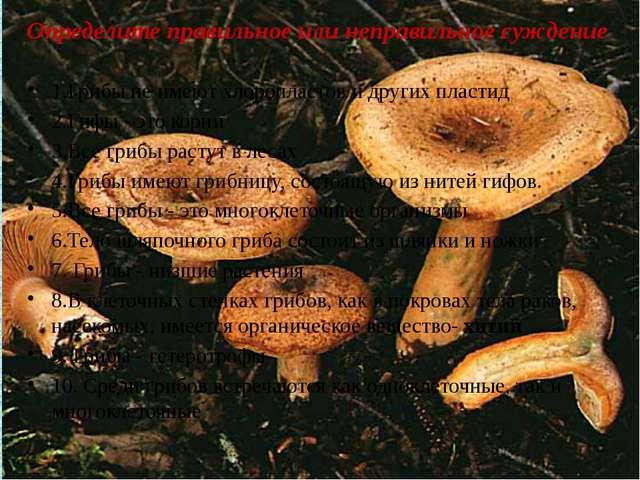 Определите правильное или неправильное суждение 1.Грибы не имеют хлоропластов...