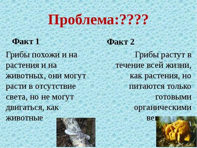 Проблема:???? Факт 1 Грибы похожи и на растения и на животных, они могут раст...