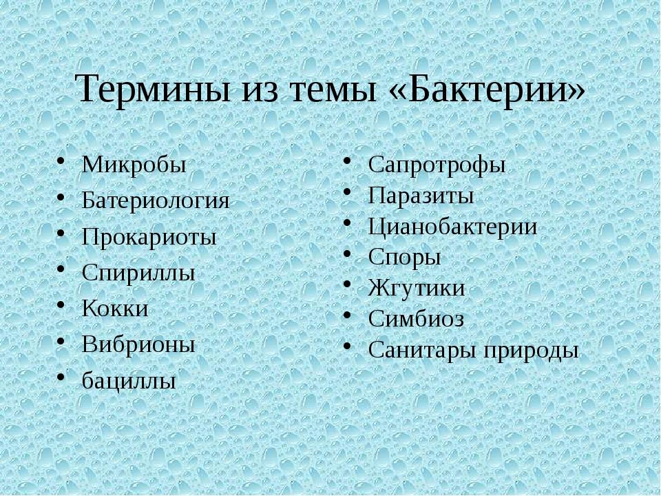 Термины из темы «Бактерии» Микробы Батериология Прокариоты Спириллы Кокки Виб...