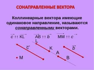 Коллинеарные вектора имеющие одинаковое направление, называются сонаправленны