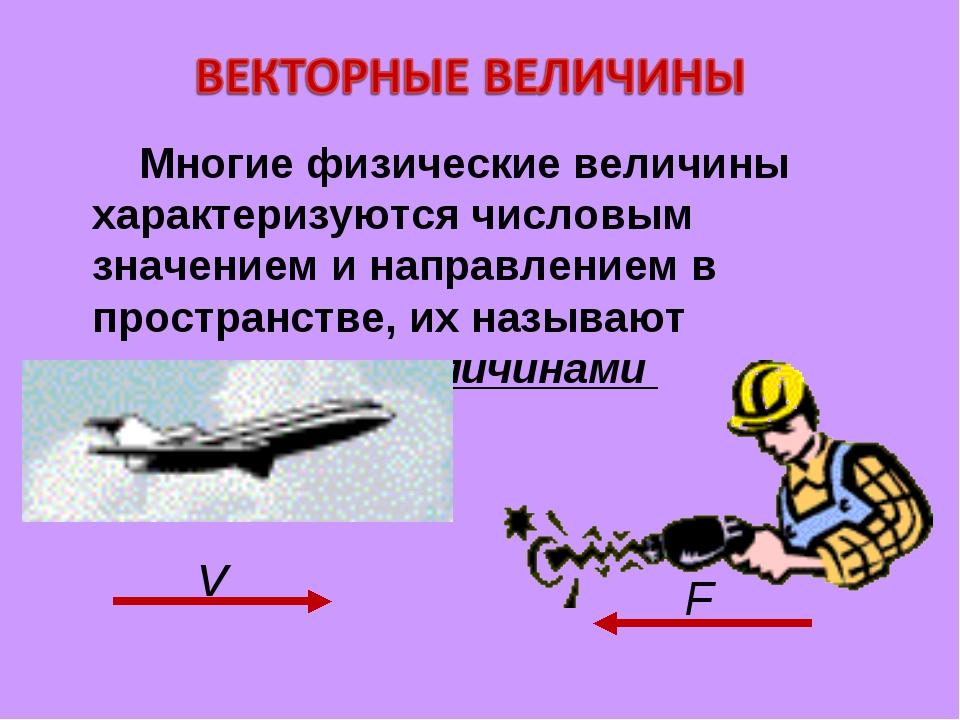 Многие физические величины характеризуются числовым значением и направлением...