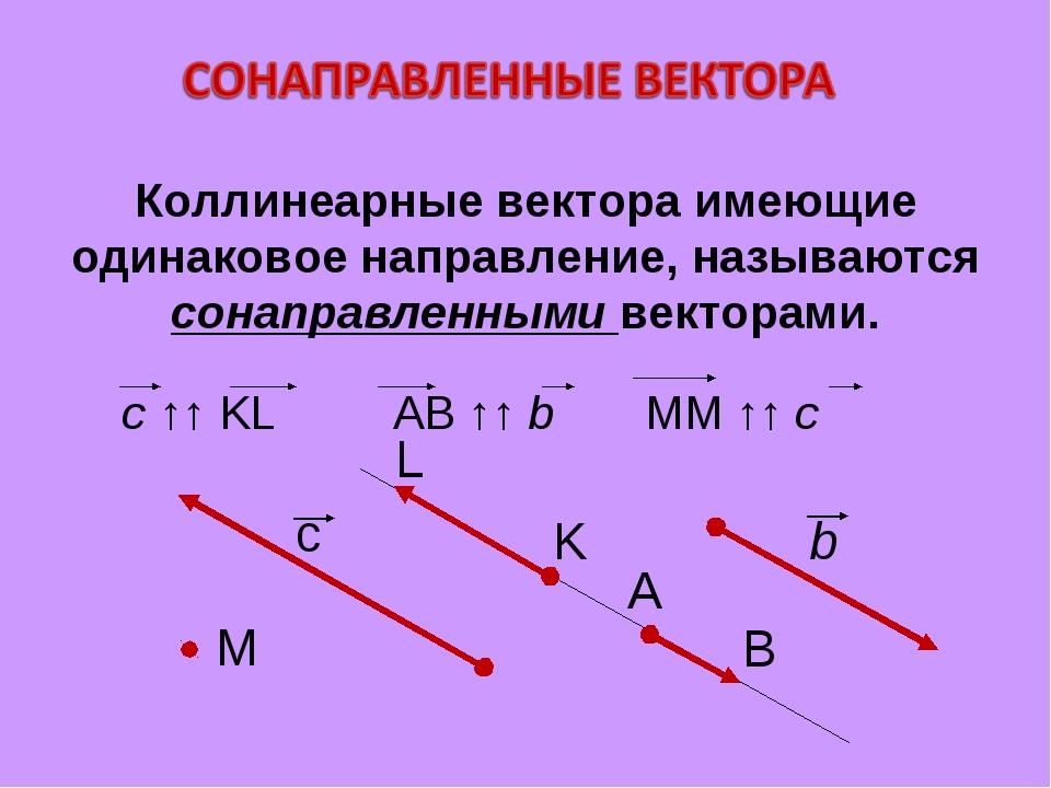 Коллинеарные вектора имеющие одинаковое направление, называются сонаправленны...
