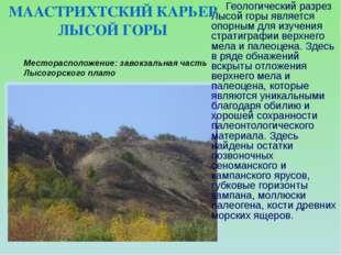 Месторасположение: завокзальная часть Лысогорского плато  Геологический разр