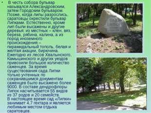 В честь собора бульвар назывался Александровским, затем Городским бульваром.