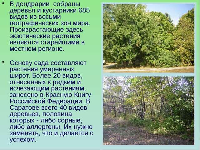 В дендрарии собраны деревья и кустарники 685 видов из восьми географических з...