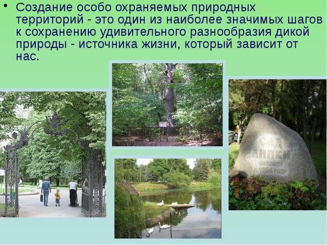 Создание особо охраняемых природных территорий - это один из наиболее значимы...