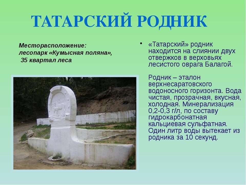 «Татарский» родник находится на слиянии двух отвержков в верховьях лесистого...
