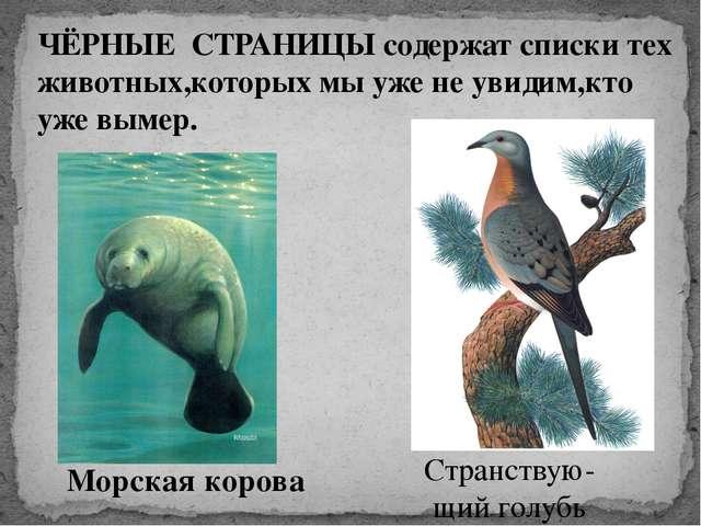 ЧЁРНЫЕ СТРАНИЦЫ содержат списки тех животных,которых мы уже не увидим,кто уже...