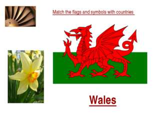 Match the flags and symbols with countries Wales