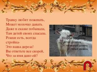 Используемые Интернет-ресурсы: http://img-fotki.yandex.ru/get/5801/18869520.1