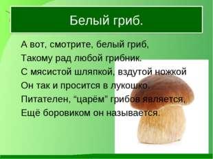 Белый гриб. А вот, смотрите, белый гриб, Такому рад любой грибник. С мясис