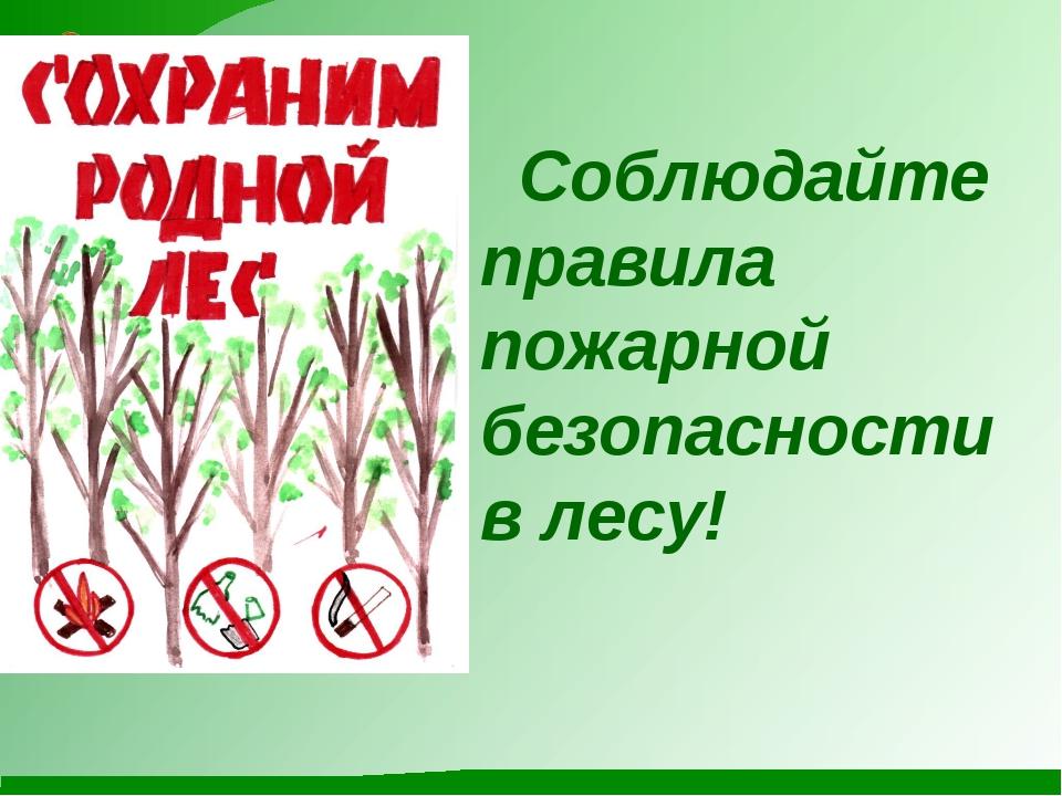 Соблюдайте правила пожарной безопасности в лесу!