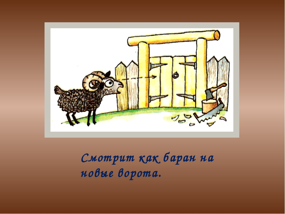 Смотрит как баран на новые ворота.