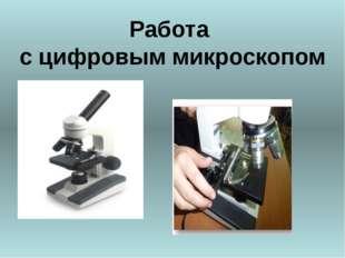 Работа с цифровым микроскопом