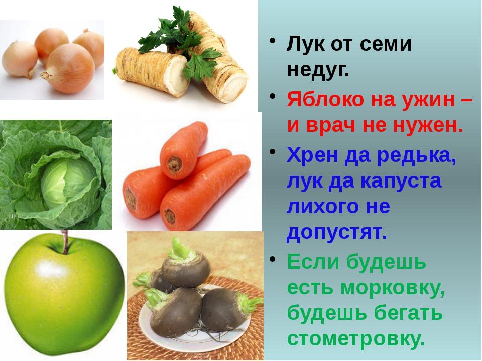 Лук от семи недуг. Яблоко на ужин – и врач не нужен. Хрен да редька, лук да...