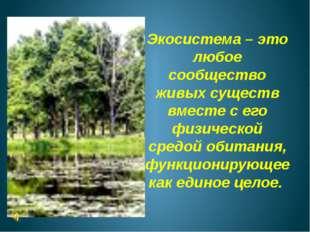 Экосистема – это любое сообщество живых существ вместе с его физической средо