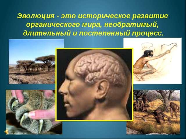 Эволюция - это историческое развитие органического мира, необратимый, длитель...