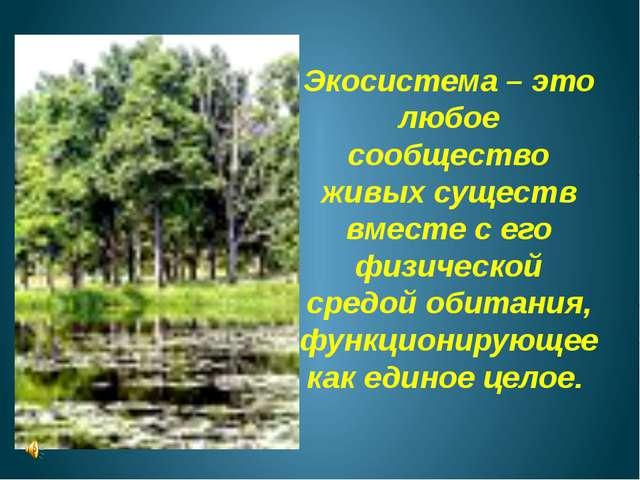 Экосистема – это любое сообщество живых существ вместе с его физической средо...