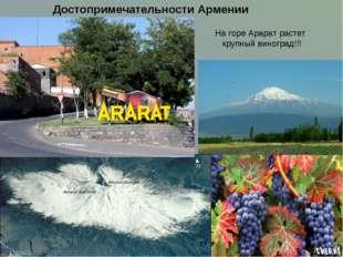 На горе Арарат растет крупный виноград!!! Достопримечательности Армении