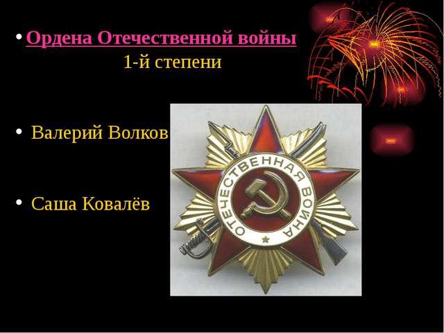Ордена Отечественной войны 1-й степени Валерий Волков Саша Ковалёв