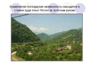 Знаменитая Колхидская низменность находится в стране куда плыл Яссон за золот