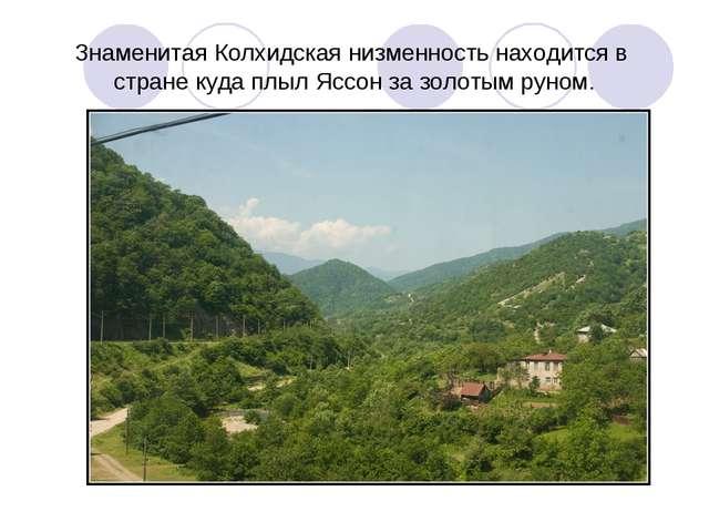 Знаменитая Колхидская низменность находится в стране куда плыл Яссон за золот...
