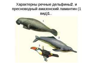 Характерны речные дельфины2. и пресноводный амазонский ламантин (1 вид)1..