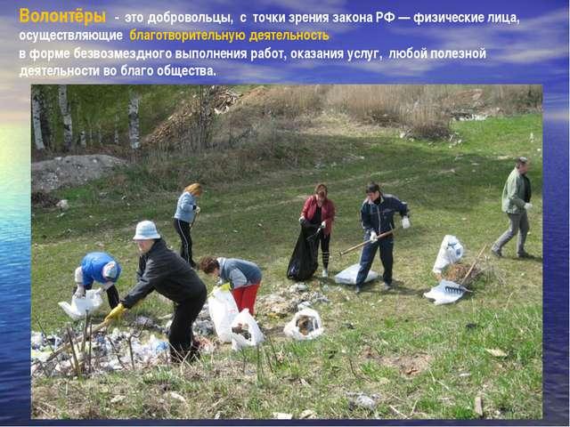 Волонтёры - это добровольцы, с точки зрения закона РФ — физические лица, осущ...