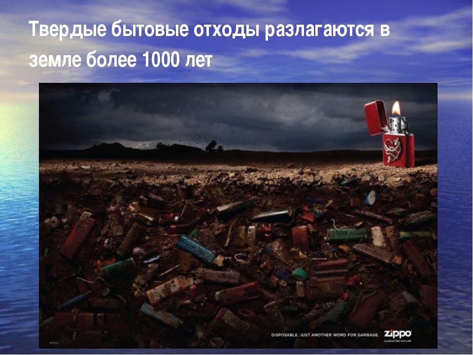 Твердые бытовые отходы разлагаются в земле более 1000 лет