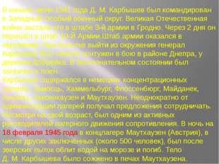 В начале июня 1941 года Д.М.Карбышев был командирован в Западный Особый вое