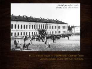 В 1914-1916 годах из Уфимской губернии было мобилизовано более 300 тыс. чело
