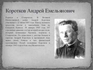 Коротков Андрей Емельянович Родился в Ставрополе. В Великой Отечественной вой
