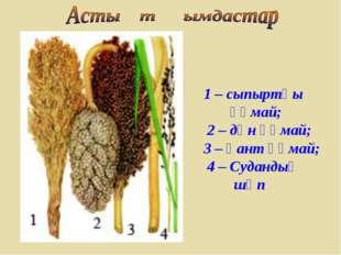 1 – сыпыртқы құмай; 2 – дән құмай; 3 – қант құмай; 4 – Судандық шөп