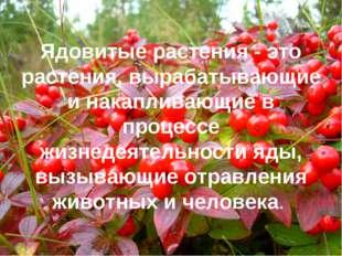 Ядовитые растения - это растения, вырабатывающие и накапливающие в процессе ж