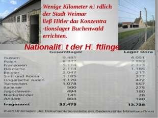 Nationalitӓt der Hӓftlinge Wenige Kilometer nӧrdlich der Stadt Weimar lieβ Hi