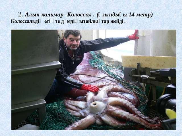 2. Алып кальмар -Колоссал. (ұзындығы 14 метр) Колоссальдің еті өте дәмді.қы...